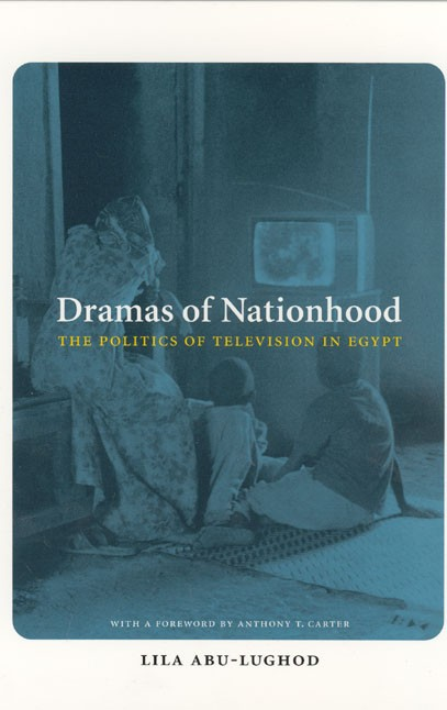 Book cover showing a tinted-blue photograph of family watching TV.